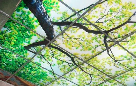 Стеклянные потолки с фотопечатью