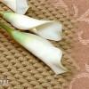 Как постелить и клеить напольное ковровое покрытие (ковролин) своими руками