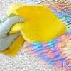 Как удалить жёлтые масляные пятна на потолке и стенах своими руками